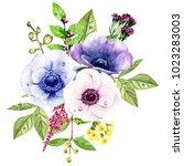 watercolor bouquet of anemones...   Shutterstock . vector #1023283003