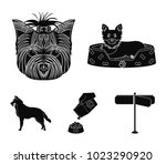 a dog in a lounger   a muzzle... | Shutterstock .eps vector #1023290920
