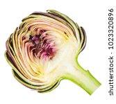 fresh artichokes isolated on...   Shutterstock . vector #1023320896
