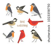 Birdwatching Icon Set. Red...