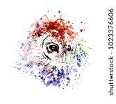 vector color illustration head... | Shutterstock .eps vector #1023376606