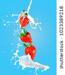 strawberry in milk shake splash ... | Shutterstock . vector #1023389218