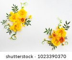 Stock photo flowers composition oh white background with spring flowers easter concept with copy spase flat 1023390370