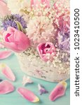 pastel colored flowers on a... | Shutterstock . vector #1023410500