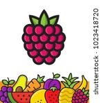 fruits icon. organic eco fruit  ... | Shutterstock .eps vector #1023418720
