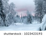 siberian winter  snowy and... | Shutterstock . vector #1023423193
