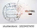 silhouette of a volleyball ball.... | Shutterstock .eps vector #1023437650