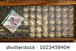 top view germination table with ...   Shutterstock . vector #1023458404