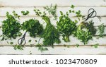 flat lay of bunches of various... | Shutterstock . vector #1023470809