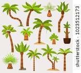 palma vector palmaceous... | Shutterstock .eps vector #1023512173