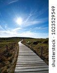 the way up hallasan...   Shutterstock . vector #1023529549