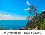 beautiful summer sea landscape...   Shutterstock . vector #1023563350