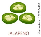 jalapeno icon. isometric... | Shutterstock .eps vector #1023564430