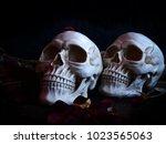 selective focus image of human... | Shutterstock . vector #1023565063