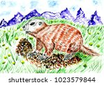 cartoon brown marmot... | Shutterstock . vector #1023579844