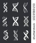 group of dna macromolecule... | Shutterstock .eps vector #1023583153