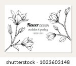 magnolia flower frame drawing ... | Shutterstock .eps vector #1023603148