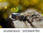 wedding rings. close up | Shutterstock . vector #1023664783