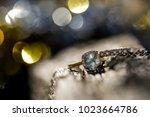 wedding rings. close up | Shutterstock . vector #1023664786