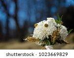 beautiful wedding bouquet | Shutterstock . vector #1023669829
