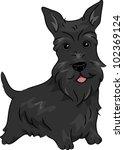 aberdeen terrier,animal,breed,canine,cartoon,clip art,clipart,cutout,dog,dog breeds,doggy,domestic animal,domestic animals,domesticated,eps