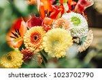 spring flower bouquet...   Shutterstock . vector #1023702790