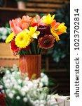 spring flower bouquet...   Shutterstock . vector #1023702814