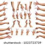 various gesture of men hand... | Shutterstock . vector #1023723739