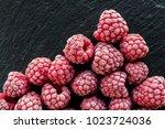 frozen raspberry on black slate ... | Shutterstock . vector #1023724036