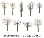 tree shape set   vector tree... | Shutterstock .eps vector #1023736450