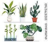set of indoor plants in pots.... | Shutterstock .eps vector #1023792760