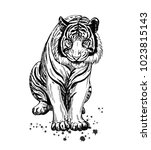 hand drawn sketch style tiger.... | Shutterstock .eps vector #1023815143