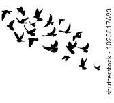 vector  isolated silhouette... | Shutterstock .eps vector #1023817693