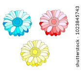 vector set of three flowers... | Shutterstock .eps vector #1023845743
