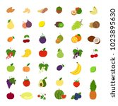 fruits illustrations set.... | Shutterstock . vector #1023895630