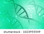 3d render of dna structure ... | Shutterstock . vector #1023955549