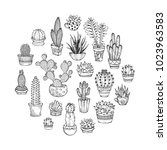 cacti and succulents round... | Shutterstock .eps vector #1023963583