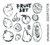 fruit set outline  white | Shutterstock .eps vector #1023972778
