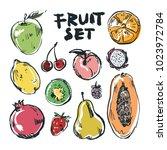 fruit set color | Shutterstock .eps vector #1023972784