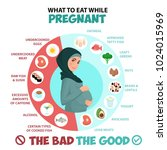 pregnant woman diet infographic.... | Shutterstock .eps vector #1024015969