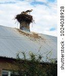 the white storks' nest on the...   Shutterstock . vector #1024038928