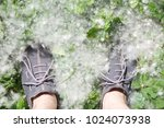 male feet on grass covered with ...   Shutterstock . vector #1024073938