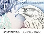 Small photo of UAE five hundred dirham close up falcon