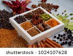 spices and herbs on the gray... | Shutterstock . vector #1024107628