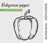 paprica  vector illustration.... | Shutterstock .eps vector #1024110628