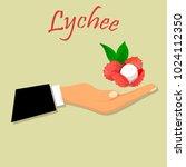 vintage fruit poster or label... | Shutterstock .eps vector #1024112350