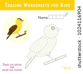 tracing worksheets for kids.... | Shutterstock .eps vector #1024116904