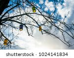 colorful lamps on the tree. | Shutterstock . vector #1024141834