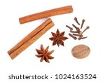 cinnamon sticks with star anise ... | Shutterstock . vector #1024163524