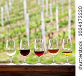 glasses with wine. red  pink ... | Shutterstock . vector #1024173220